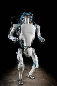 Atlas is a high mobility, humanoid robot