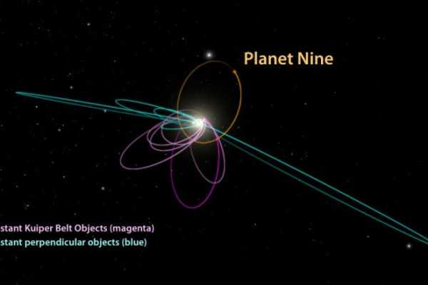 Neptune Sized Planet X Planet 9